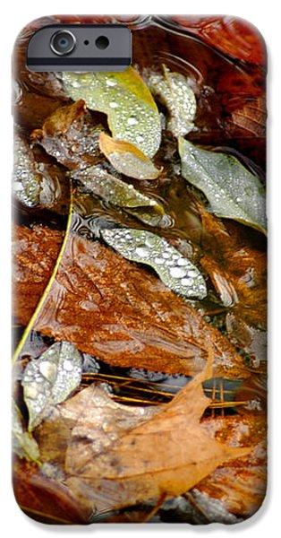 River Leaves iPhone Case by LeeAnn McLaneGoetz McLaneGoetzStudioLLCcom