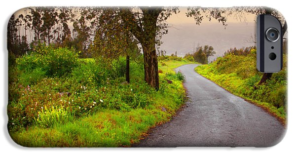 Asphalt iPhone Cases - Road on Woods iPhone Case by Carlos Caetano