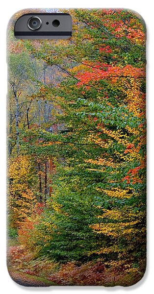 Road Through Autumn Woods iPhone Case by Larry Landolfi and Photo Researchers
