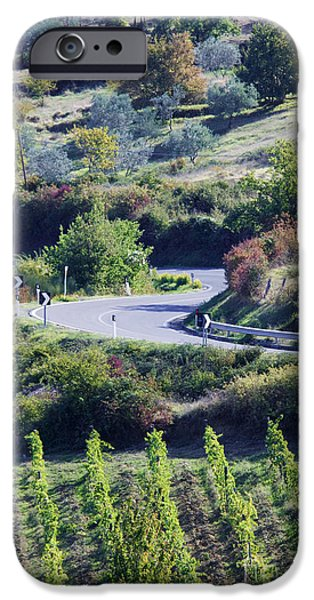 Chianti Hills iPhone Cases - Road Winding Through Vineyard and Olive Trees iPhone Case by Jeremy Woodhouse