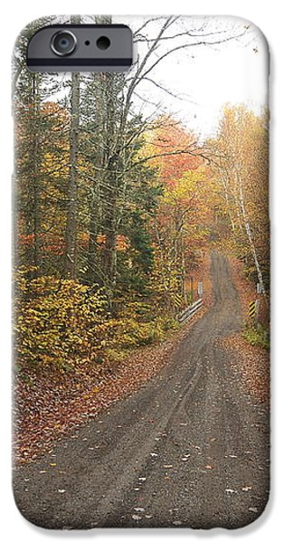 Roads Less Traveled iPhone Case by Catherine Reusch  Daley