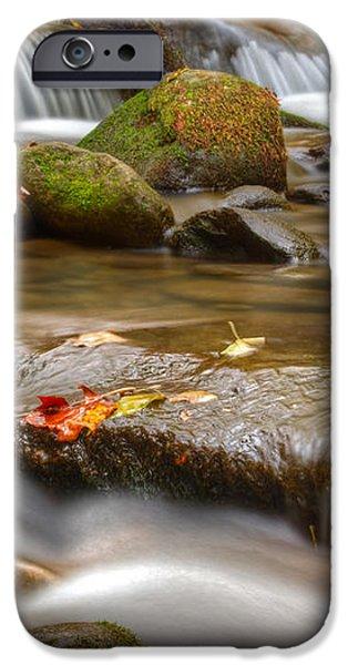 Roaring Fork Stream Great Smoky Mountains iPhone Case by Steve Gadomski