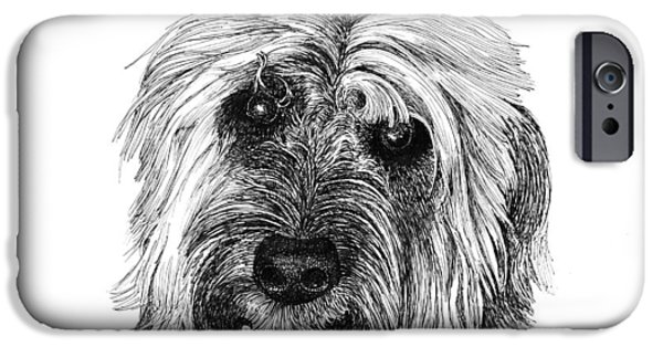 Owner Drawings iPhone Cases - Rocky iPhone Case by Jack Pumphrey