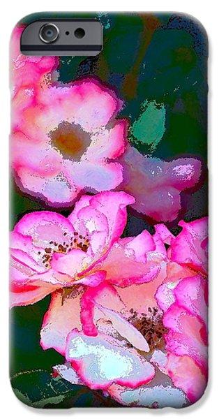 Rose 130 iPhone Case by Pamela Cooper