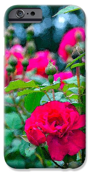 Rose 132 iPhone Case by Pamela Cooper
