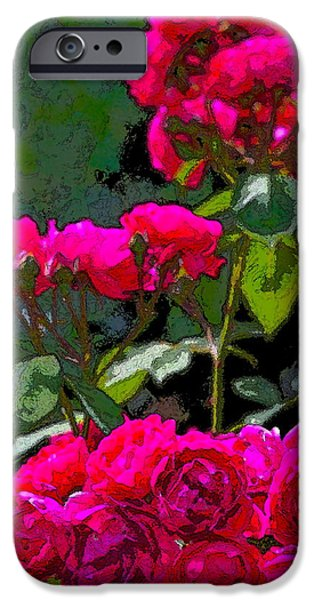 Rose 135 iPhone Case by Pamela Cooper
