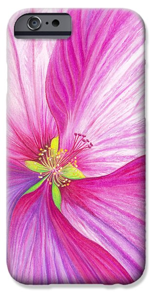 Florals Pastels iPhone Cases - Rose Mallow iPhone Case by Amy Tyler