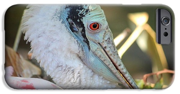 Spoonbill iPhone Cases - Roseate Spoonbill Profile iPhone Case by Carol Groenen