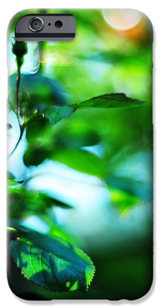 Abstract Expressionism Photographs iPhone Cases - Rosebud iPhone Case by Rebecca Sherman