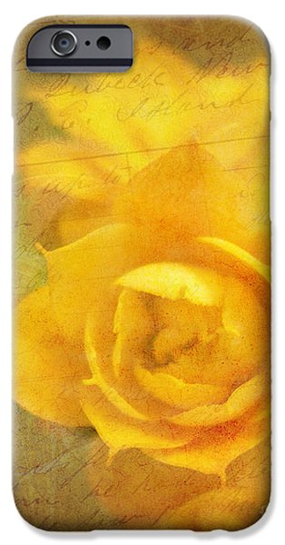 Roses for Remembrance iPhone Case by Judi Bagwell