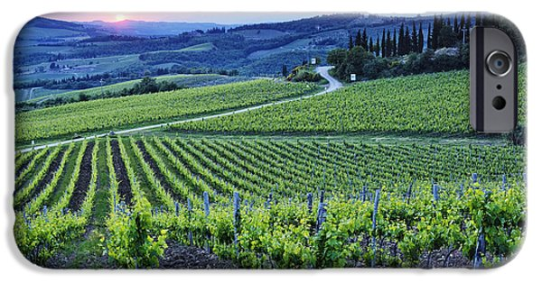 Chianti Hills iPhone Cases - Rows of Grapevines at Sunset iPhone Case by Jeremy Woodhouse