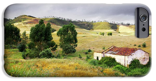 Shed iPhone Cases - Ruin in Countryside iPhone Case by Carlos Caetano