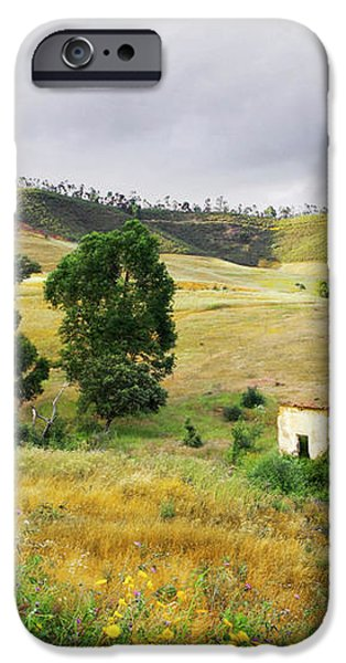 Ruin in Countryside iPhone Case by Carlos Caetano
