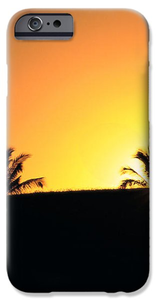 Running At Sunset iPhone Case by Dana Edmunds - Printscapes