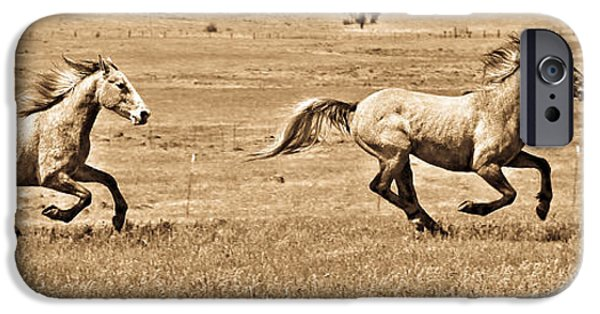 The Horse iPhone Cases - Running Wild iPhone Case by Steve McKinzie