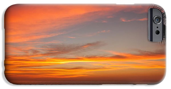 Jaco iPhone Cases - Running with a Dog at Sunset iPhone Case by Anthony Doudt