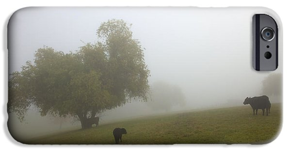 Yakima Valley iPhone Cases - Rural Fog iPhone Case by Mike  Dawson