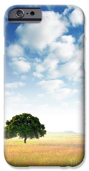 Agriculture iPhone Cases - Rural Scene iPhone Case by Carlos Caetano