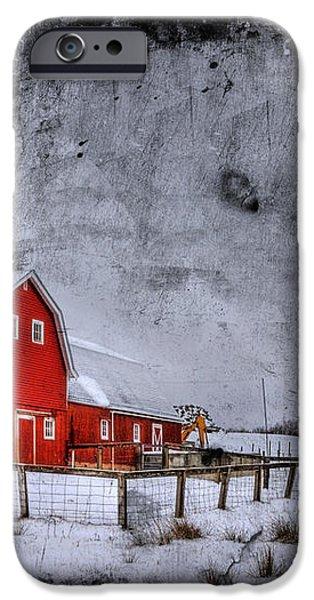 Rural Textures iPhone Case by Evelina Kremsdorf