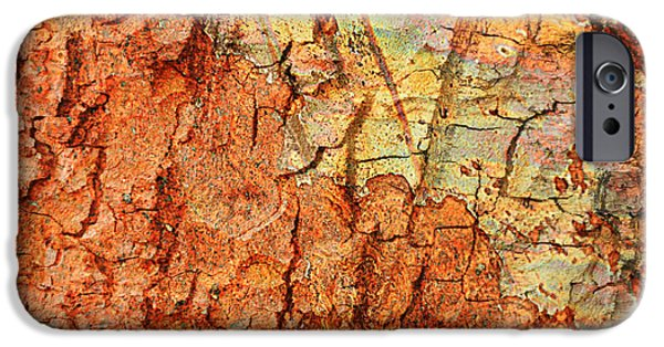 Abstracts From Nature iPhone Cases - Rusty Bark Abstract iPhone Case by Carol Groenen