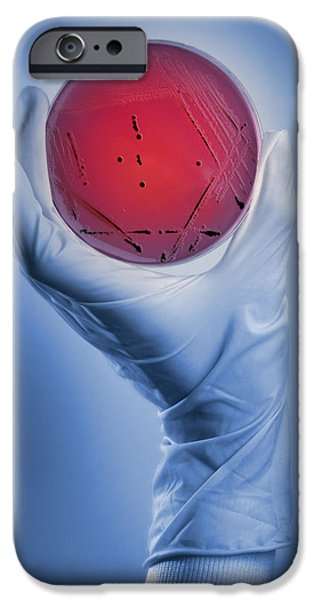 Salmonella Culture iPhone Case by Tim Vernon, Lth Nhs Trust