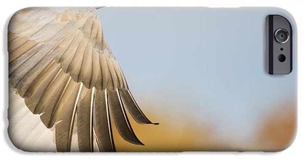 New Individuals iPhone Cases - Sandhill Crane Flying Bosque Del Apache iPhone Case by Sebastian Kennerknecht