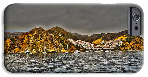 Wrigley iPhone Cases - Santa Catalina Island iPhone Case by Cheryl Young