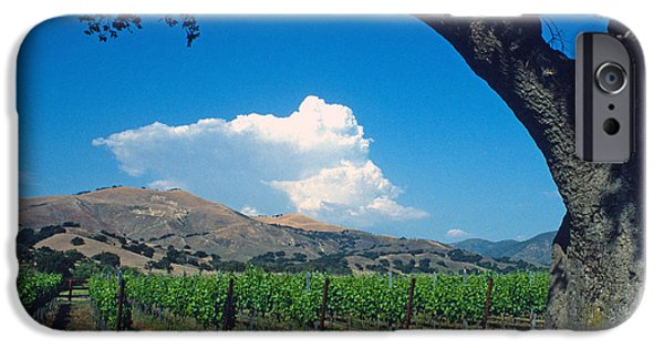 Vineyard Prints iPhone Cases - Santa Ynez Vineyard View iPhone Case by Kathy Yates