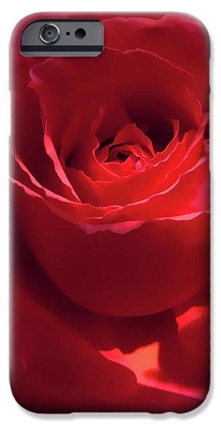 Scarlet Rose Flower iPhone Case by Jennie Marie Schell