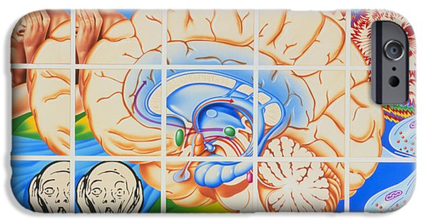 The Scream iPhone Cases - Schizophrenia: Artwork Of Brain And Paintings iPhone Case by John Bavosi