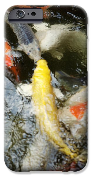 Japanese School iPhone Cases - School of Koi iPhone Case by Larry Dale Gordon - Printscapes