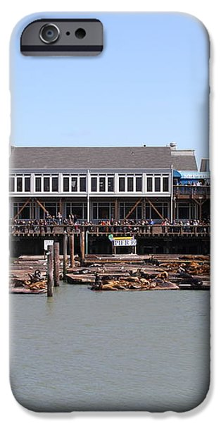 Sea Lions At Pier 39 San Francisco California . 7D14273 iPhone Case by Wingsdomain Art and Photography