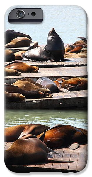 Sea Lions At Pier 39 San Francisco California . 7D14316 iPhone Case by Wingsdomain Art and Photography