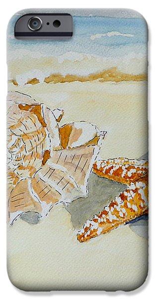 Sea shells iPhone Case by Eva Ason