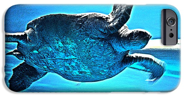 Santa Cruz iPhone Cases - Sea Turtle iPhone Case by Lisa McKinney