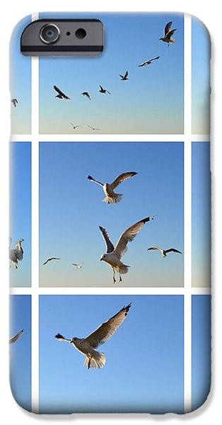 Seagull Collage 2 iPhone Case by Michelle Calkins
