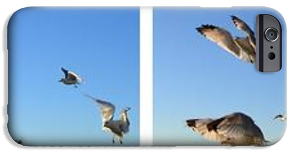 Flying Seagull iPhone Cases - Seagull Collage iPhone Case by Michelle Calkins