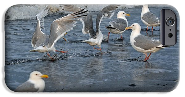 Seagull iPhone Cases - Seagull Dynamics iPhone Case by Debra  Miller