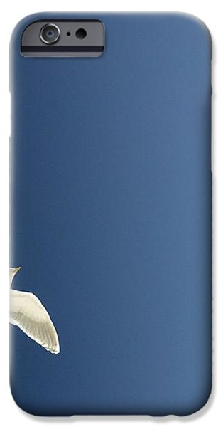 Seagull Soaring iPhone Case by Con Tanasiuk
