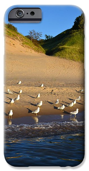 Seagulls at the Bowl iPhone Case by Michelle Calkins