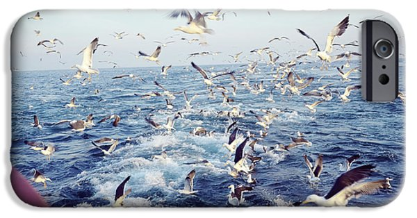 Flying Seagull iPhone Cases - Seagulls iPhone Case by Dirk Wiersma