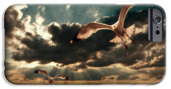 Flying Seagull iPhone Cases - Seagulls In A Grunge Style iPhone Case by Meirion Matthias