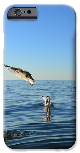 Seagulls over Lake Michigan iPhone Case by Michelle Calkins