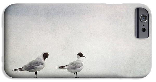 Fauna iPhone Cases - Seagulls iPhone Case by Priska Wettstein