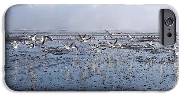 Seagull iPhone Cases - Seagulls iPhone Case by Svetlana Sewell