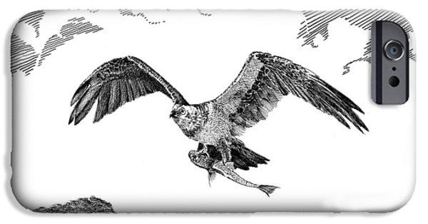 Hawk Art Print iPhone Cases - Seahawk dinnertime iPhone Case by Jack Pumphrey