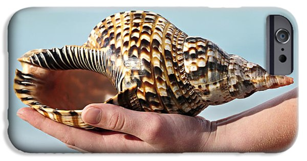 Escape iPhone Cases - Seashell in hand iPhone Case by Elena Elisseeva