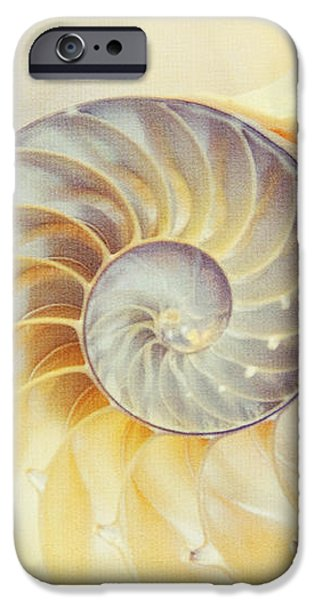 SeaShell. Light Version iPhone Case by Jenny Rainbow