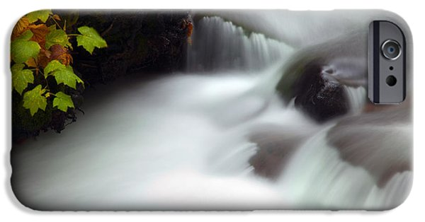 Autumn iPhone Cases - Seasons Rush By iPhone Case by Mike  Dawson