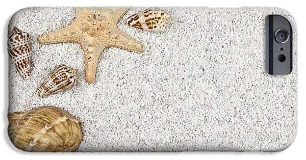 Starfish iPhone Cases - Seastar And Shells iPhone Case by Joana Kruse